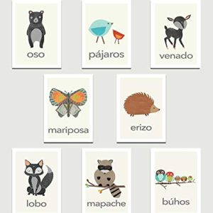 Animals Flash Card - Educational Equipments