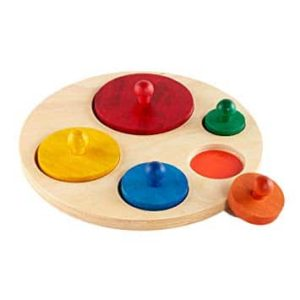 Circle Shape Sorter - Educational Equipments