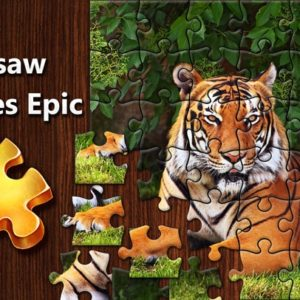 Jigsaw Picture Puzzle - Educational Equipments