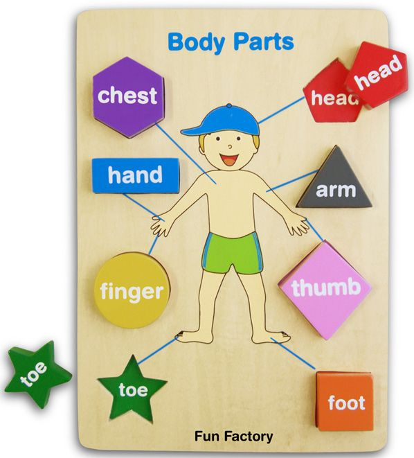 Parts of Body Puzzle - Wooden Educational Equipments