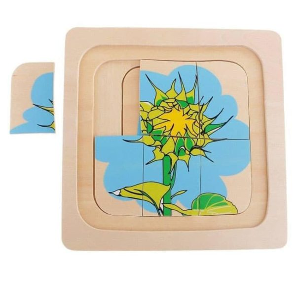 Plant-Growth-Puzzle-Educational-Equipments